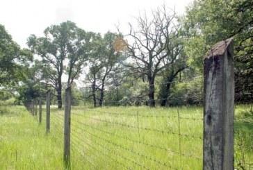 2010'da 9,5 bin Hektar Arazi Satıldı, Bedel 187 milyon Dolar