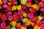 Aşk sınır tanımaz, Ukrayna'da online Türkçe çiçek servisi; sendflower.com.ua