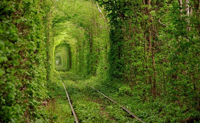 Ukrayna'nın gizleri… İşte görülesi 10 doğa harikası