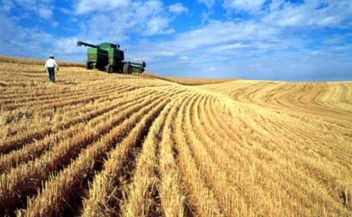 Sektörün içinden; 2015 Sezonu Ukrayna tarımında nasıl bir yıl olacak ? (Ali Bulut)