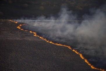 Dünyanın gözü Ukrayna'da, Çernobil ormanlarında çıkan yangın söndürüldü