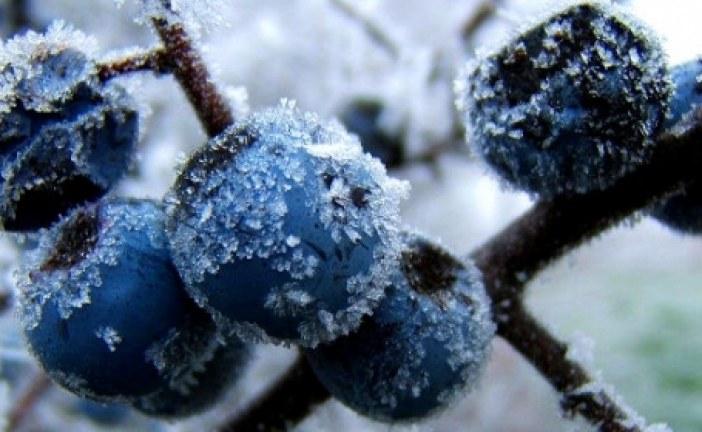 Meteoroloji açıkladı, Kiev yüzyılın en soğuk Mart'ını yaşadı