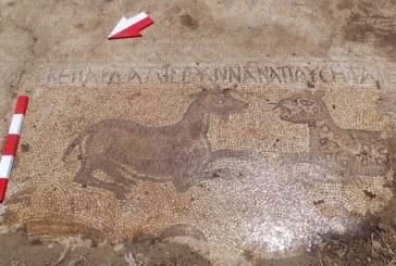 В Турции обнаружили мозаику с библейскими текстами