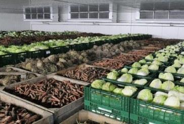 Sektörün içinden, Tarım Bakanlığı yüzbinlerce tonluk meyve sebze depoları kurmaya hazırlanıyor