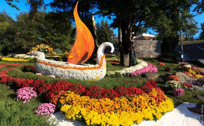 Hafta sonu yaklaşıyor, Kasımpatı festivali sonbahar tutkunlarını bekliyor