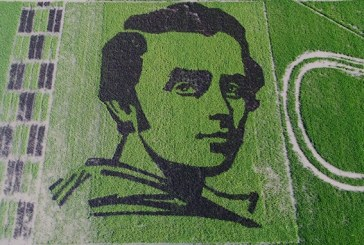 Tam 1360 metre kare, pirinç tarlasında Şevçenko portresi rekorlar kitabına girdi (video)
