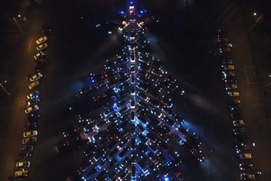 Zaporojo'de rekor denemesi, 250 otomobille yılbaşı ağacı çizdiler