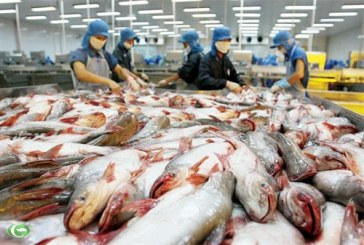 Sektörün içinden, Ukrayna balık ihtiyacının yüzde 80'ini ithal ediyor