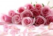 Ukrayna'ya çiçek göndermek artık çok kolay
