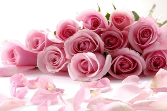 Ukrayna'ya çiçek göndermek artık çok kolay, sendflower.com.ua