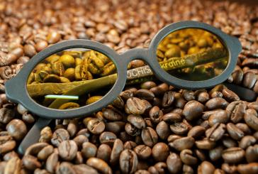 Ukraynalı mucitten çevre dostu gözlükler, ana madde kahve ve keten