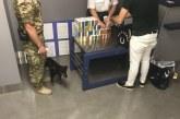 'Tersine kaçakçılık', Ukrayna'ya sigara sokmaya çalışan Türk vatandaşı yakalandı