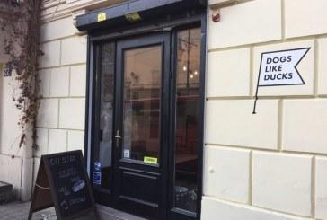 Lviv'deki kafe, dünyanın en iyi 100 vegan kafesi arasına girdi
