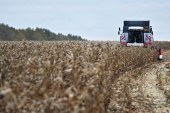 Dünya Bankası'ndan Ukrayna için çarpıcı yorum, 'tarım alanları Avrupa'nın üçte biri, ama…'
