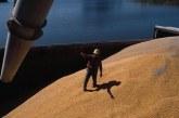 Tarımda yüzler gülüyor, tahıl ihracatı 39 milyon tona ulaştı
