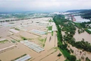 Batı Ukrayna'yı sel aldı, zarar 150 milyon UAH (video)