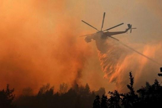 Çernobil yakınlarında orman yangını